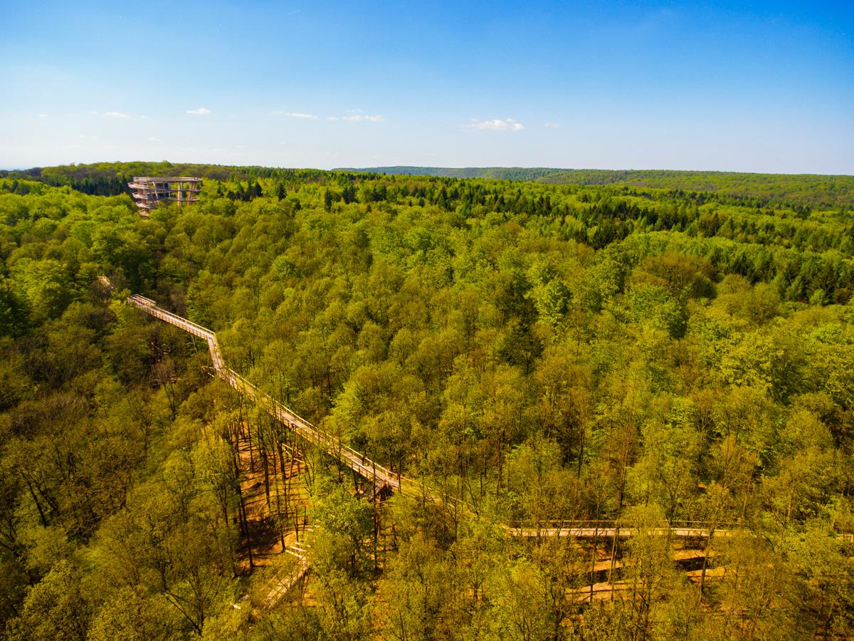 Image Result For Baumwipfelpfad Steigerwald