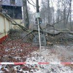 """Erste Zwischenbilanz Sturmtief """"Egon"""" - Sturmschäden vor allem im Hain"""
