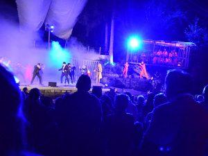 Waldbühne Hedritt Blues Brothers