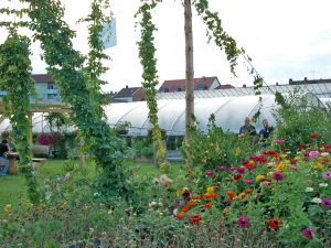 Hopfenzupferfest in Bamberg