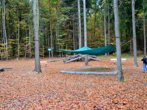 Herbst-im-Steigerwald Baumwipfelpfad