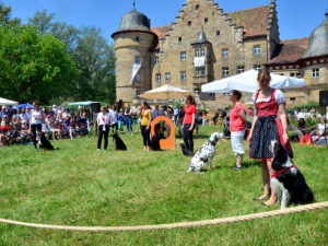 Gartenfest Schloss Eyrichshof