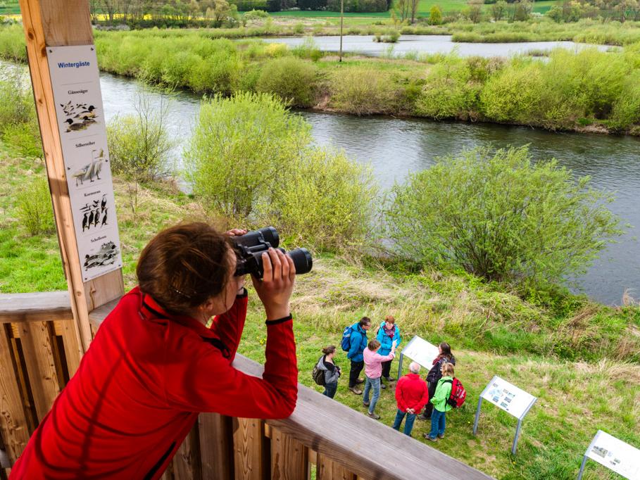 Mainschleife Unterbrunn - Vogelbeobachtungsturm