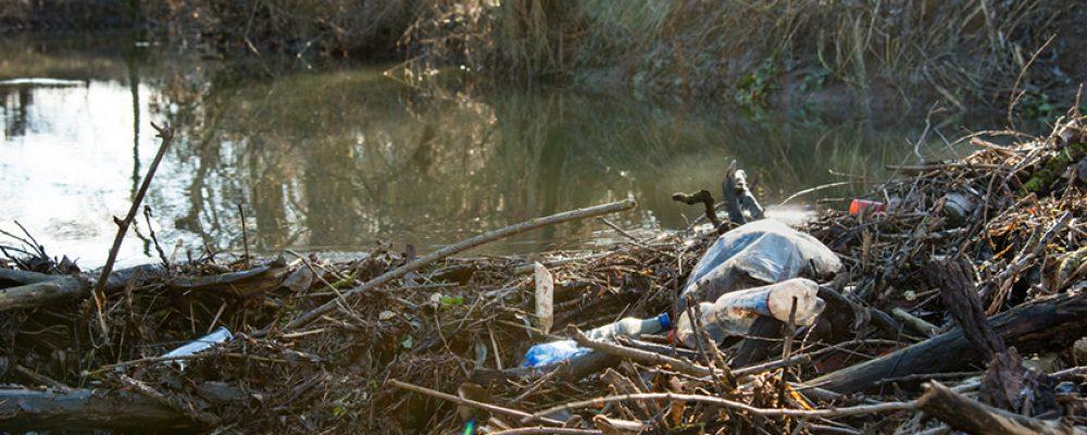 Mach mit: Gemeinsam für saubere Flüsse und Seen
