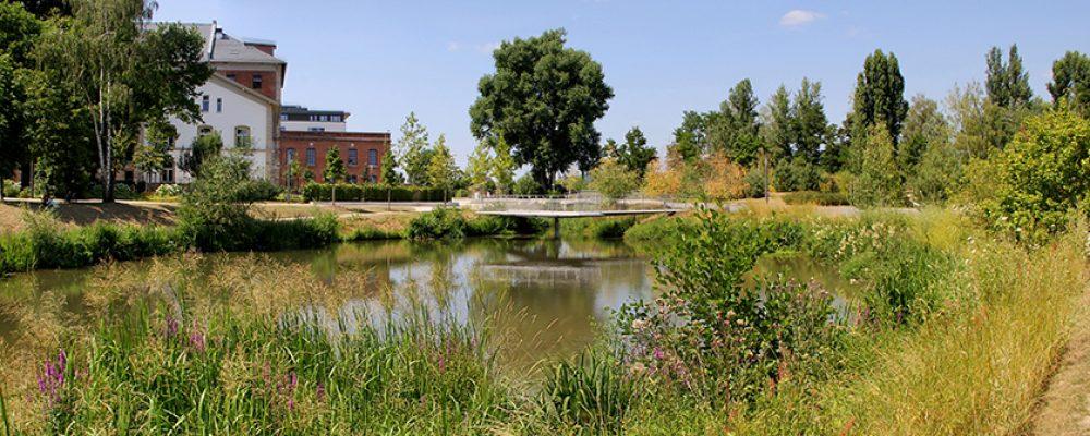 Bamberger Parks im Wandel