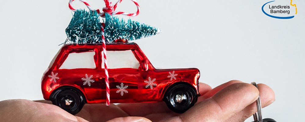 Gewusst wie! – Weihnachtsbaum richtig transportieren