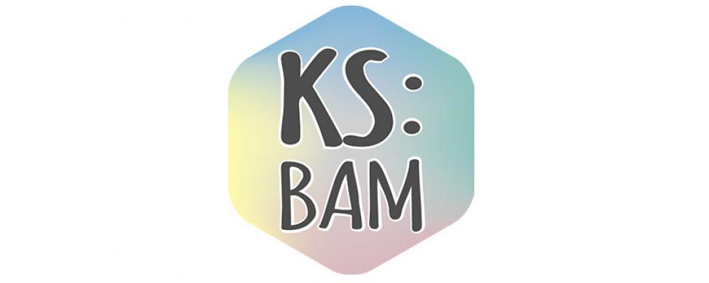 Der KS:BAM feiert das Jubiläum der Bamberger Verfassung