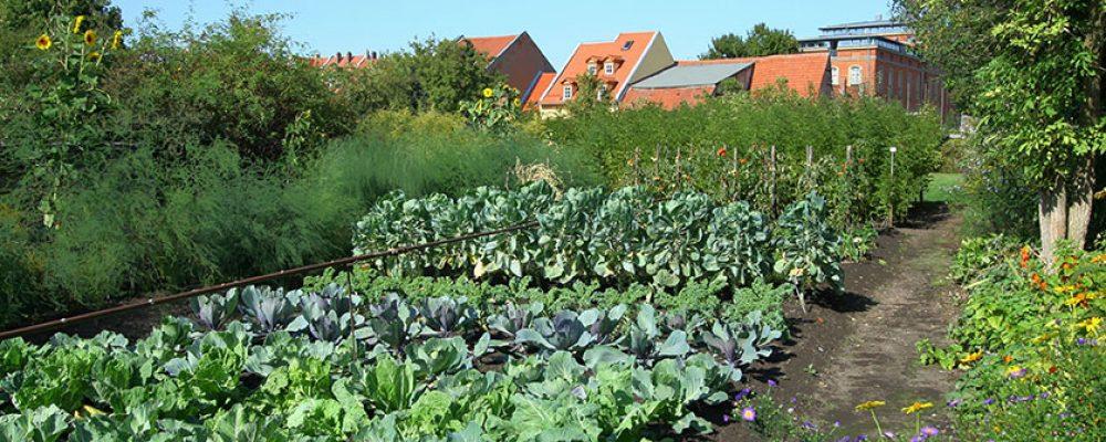 Gartenbauprämie zum Erhalt des Welterbes