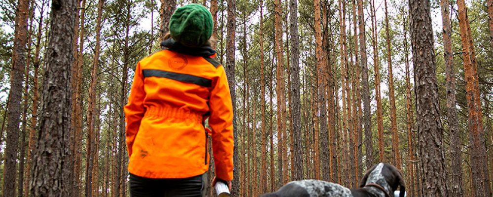 26,5 Millionen Kubikmeter Schadholz in Bayerns Wäldern