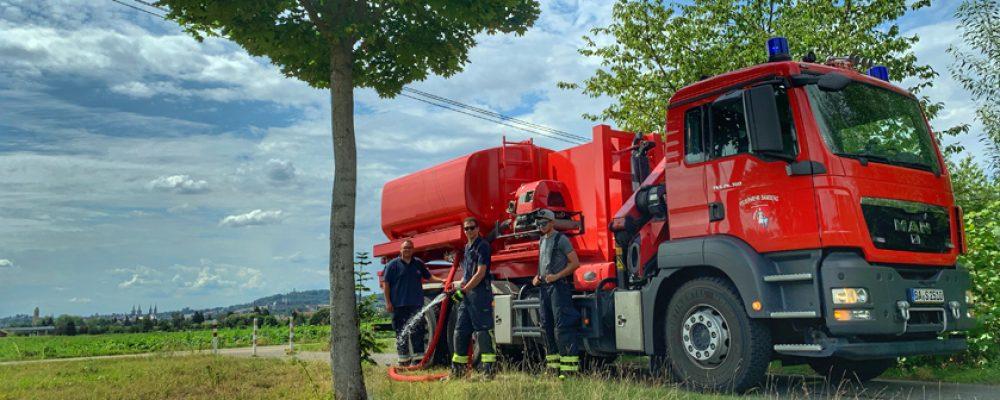 Hilfe für Bäume wegen Trockenheit