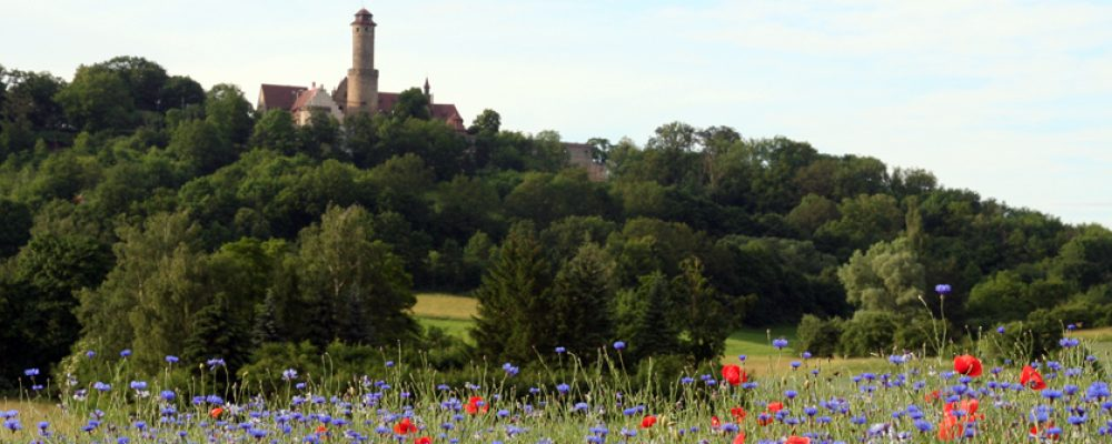 Seniorenführung auf der Altenburg