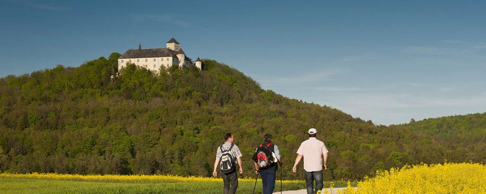 Profitieren Bamberg und der Landkreis vom Tourismus?