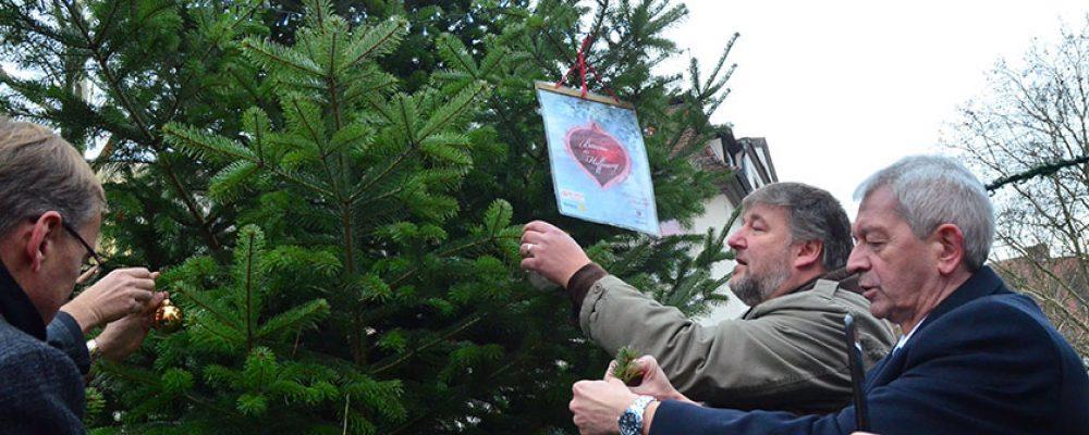 """""""Baum der Hoffnung"""" am Freitag der Öffentlichkeit übergeben."""
