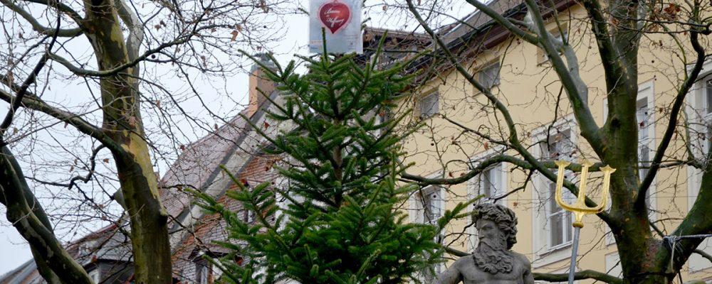 """""""Baum der Hoffnung"""" am Dienstag der Öffentlichkeit übergeben"""