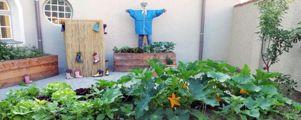 Martinschüler schaffen eigenen urbanen Schulgarten