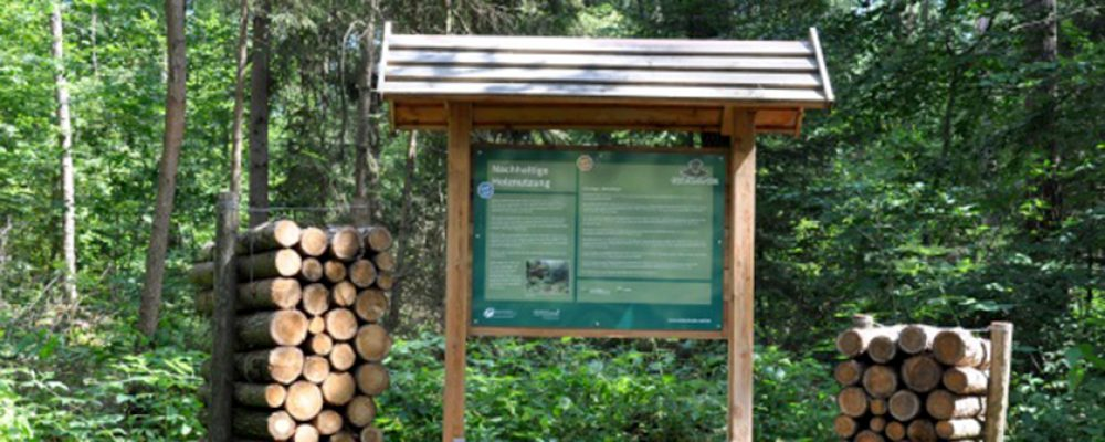 Holz statt Plastik im Bruderwald